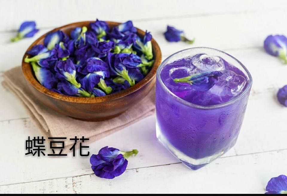 「蝶豆花」的圖片搜尋結果